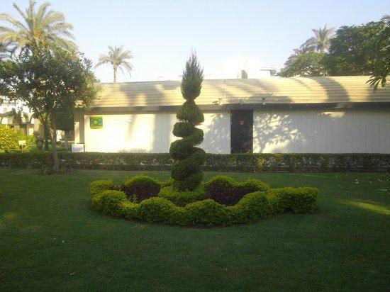 Oasis Hotel: garden