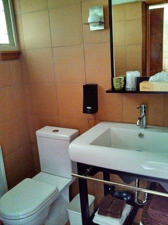 The Usonian Inn LLC: Bathroom