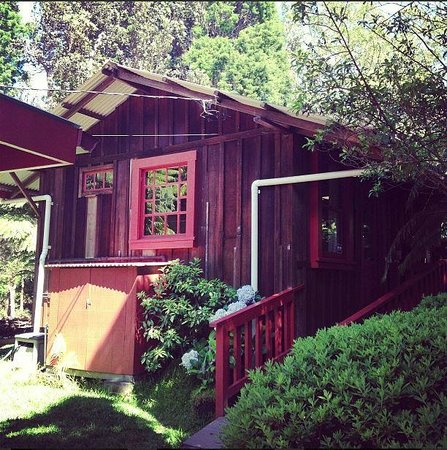 Crater Rim Cabin: cute cabin getaway