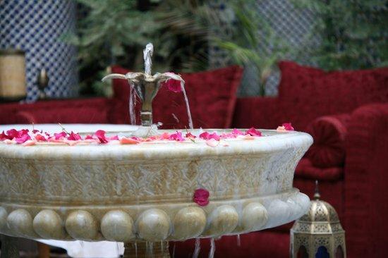 Riad El Yacout: The fountain
