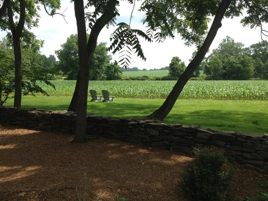 Woolverton Inn: view from the path leading to private cottages