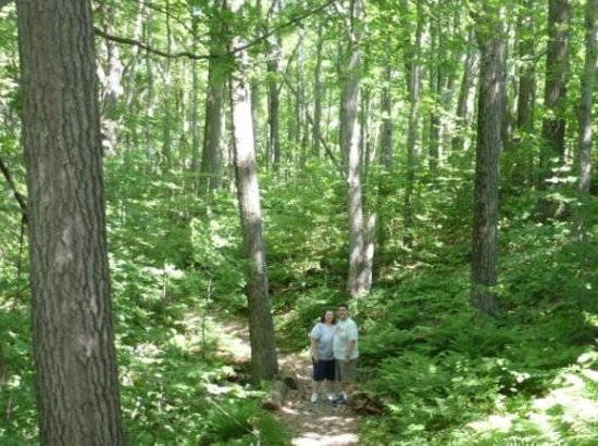 Chippewa Moraine Ice Age State Recreation Area: Beautiful forests but over-run with mosquitos
