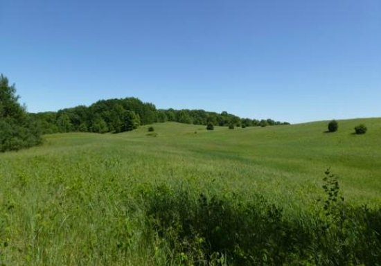 Chippewa Moraine Ice Age State Recreation Area: Amazing rolling hills - but beware of ticks