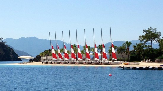 D Maris Bay: we took refreshment courses and obtained a certificate for sailing cats