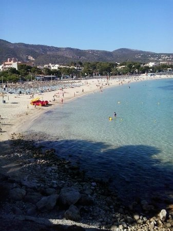 Globales Palmanova: This is Palma nova beach!