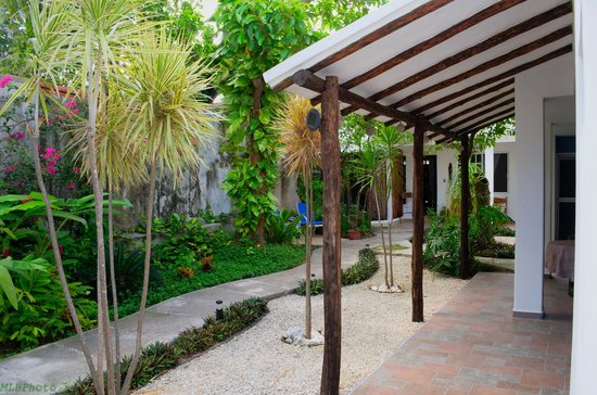 Villa Escondida Cozumel Bed and Breakfast: Palapa Breezeway