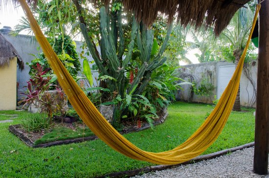 Villa Escondida Cozumel Bed and Breakfast: Relaxing hammock and yard