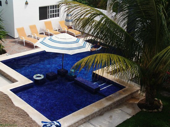 Villa Escondida Cozumel Bed and Breakfast: Sparkling pool