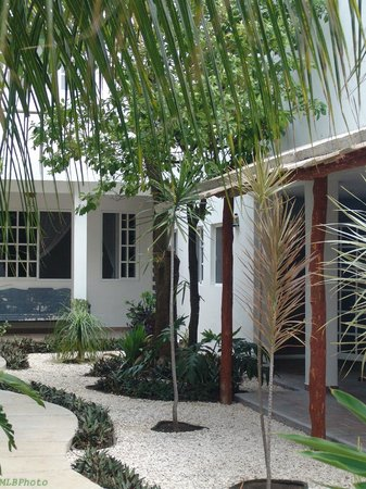 Villa Escondida Cozumel Bed and Breakfast: Grounds
