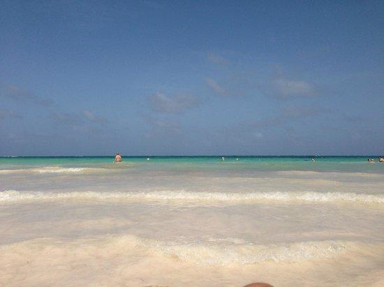 Sanctuary Cap Cana by Playa Hotels & Resorts: Beach view