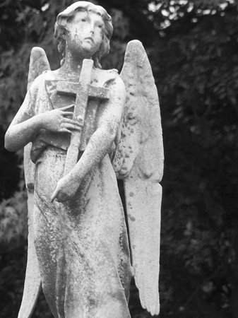 Boroughs Of The Dead: Macabre New York City Walking Tours: Customer Photo Detail of Green-Wood Cemetery Tour