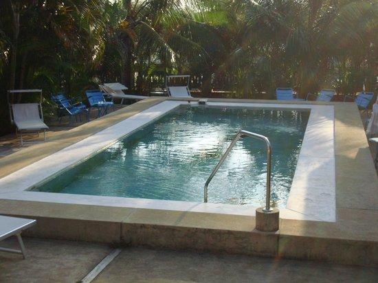 Hotel Casa de Campo Pedasi: very clean pool