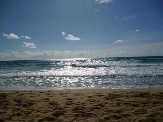 Hotel Paradiso Residence : Hotel Paradiso's beach