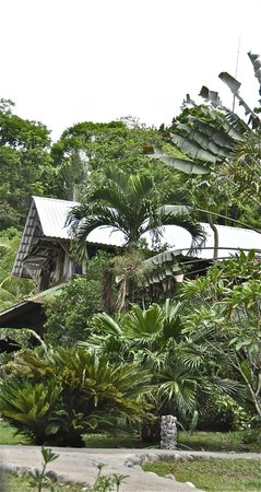 Omega Tours Eco Jungle Lodge: Stone! More Stone! Main building.