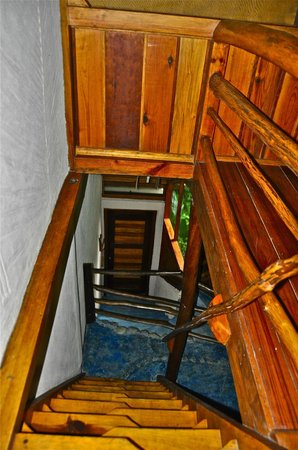 Omega Tours Eco Jungle Lodge : Upstairs bungalow's view downstairs