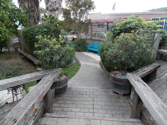 Tasman Bay Backpackers : front yard