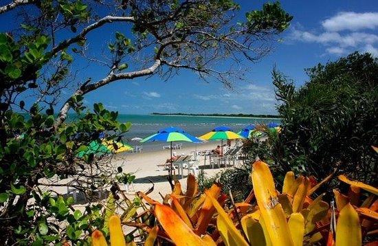 Macuco Praia Ecologica