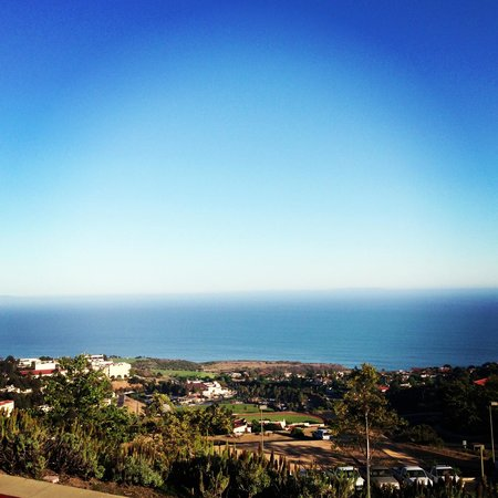Villa Graziadio Executive Center at Pepperdine University : ROOM WITH A VIEW