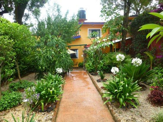 Casa de la Vida: View of La Casa de Vida after walking through the gate. Gardens all around!