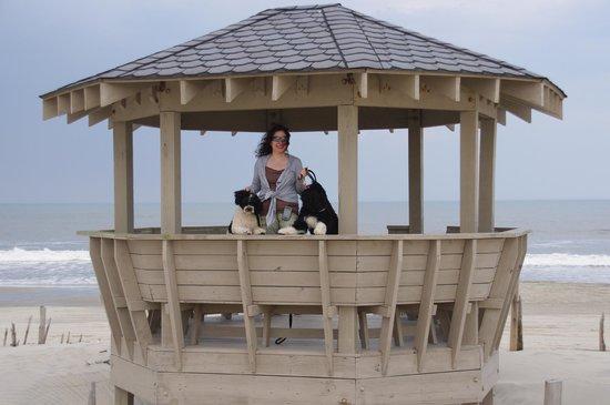 Sunnybank Luxury Estate: Beach Gazebo!