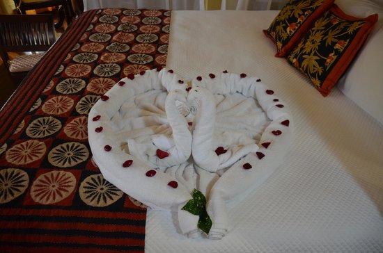 Nayara Resort Spa & Gardens: Towel Animals!