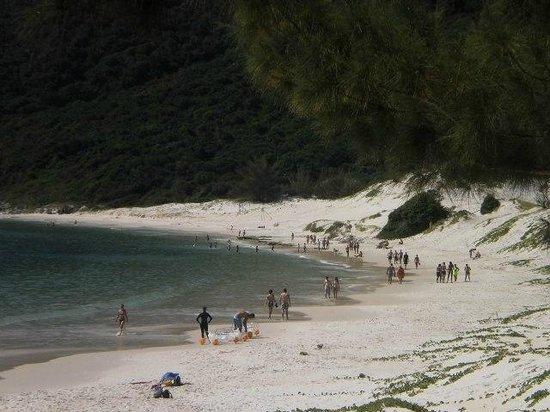 Pousada Tartaruga: isla el Farol,un paraiso