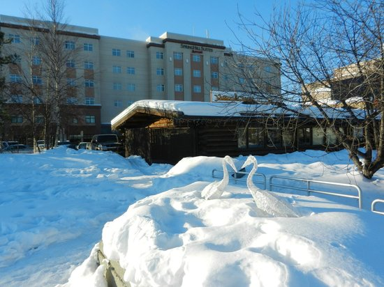 SpringHill Suites Fairbanks : hotel from riverside park