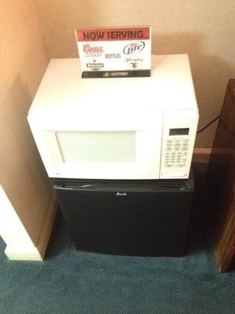 Deluxe Inn Lumberton: room came with little fridge and microwave.