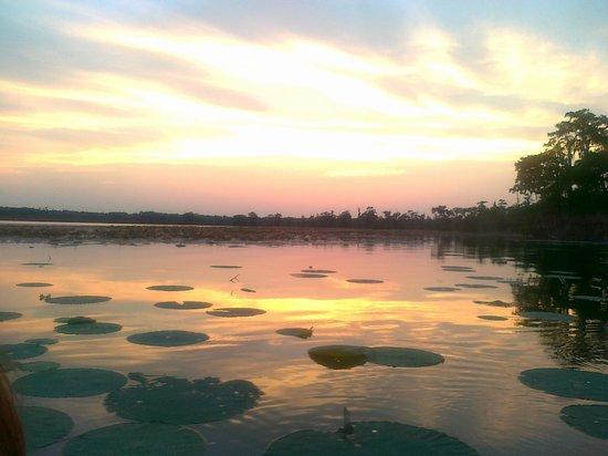 Lake Martin at sunset