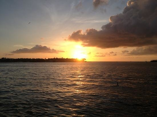Key West Bed and Breakfast: Lägg till en bildtext