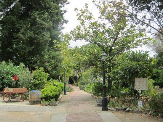 Dallidet Adobe and Gardens: view of garden through fence