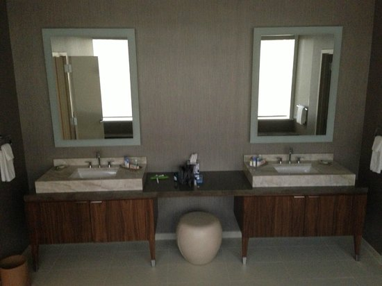 Hyatt Centric Chicago Magnificent Mile: Bathroom in the Presidential Suite
