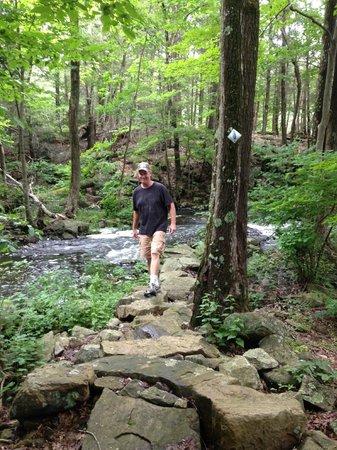 Arrow Park: Hiking on the Arrow Trail