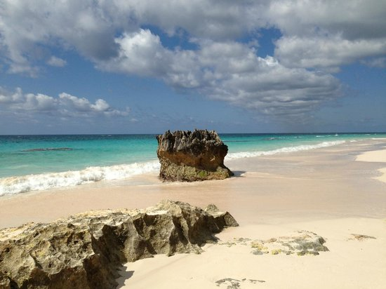 Elbow Beach, Bermuda: Beach