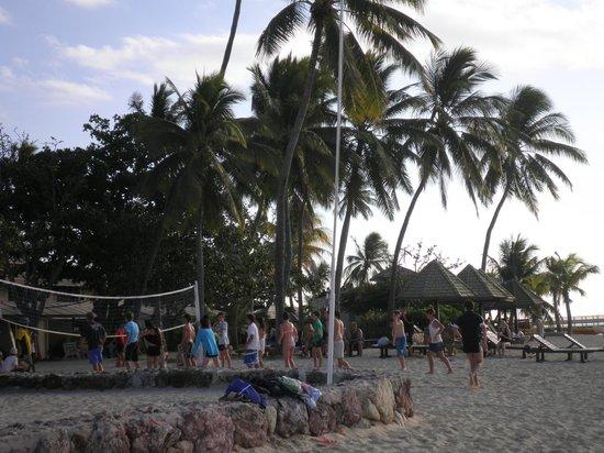 Plantation Island Resort: vollyball at 4