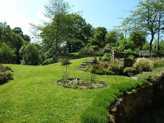 Dilston Mill B&B: Dilston Mill - tranquil garden