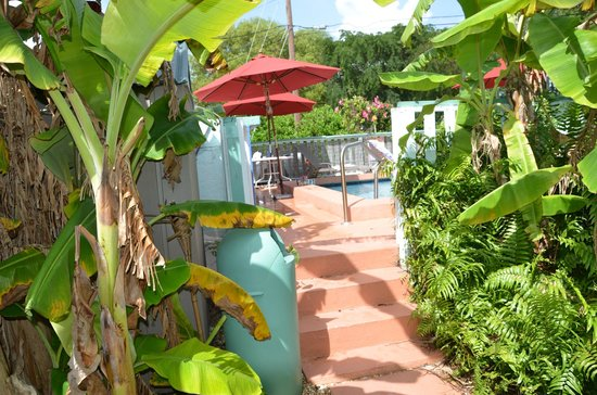 Royal Hawaiian Motel / Botel: Pool