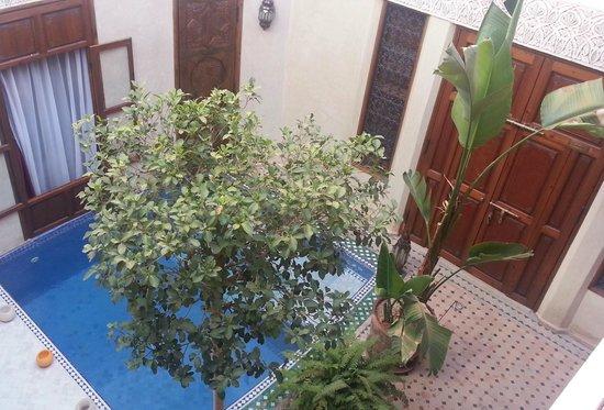 Riad de la Belle Epoque : Piscina justo al lado de la puerta de entrada de dos habitaciones