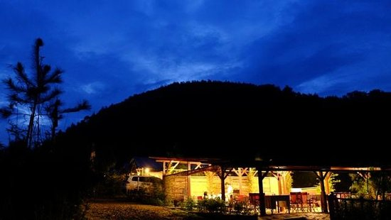 Sari Ater Hotel : View from restaurant in camping area w/ pine forest as a background