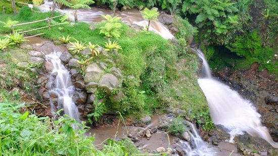 Sari Ater Hotel : River & Waterfall view from Camp Room
