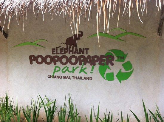 大象粑粑造纸公园