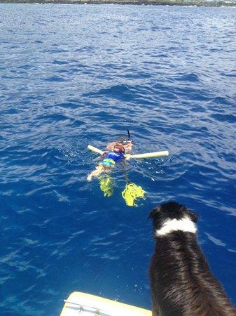 Torpedo Tours: Dylan snorkeling