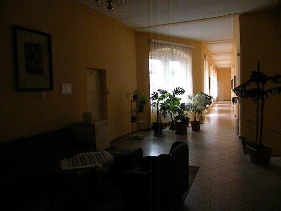 Arany Strucc Szalloda: corridoio
