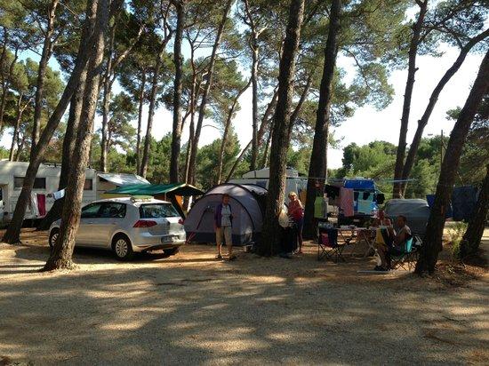 Camping Cikat 사진