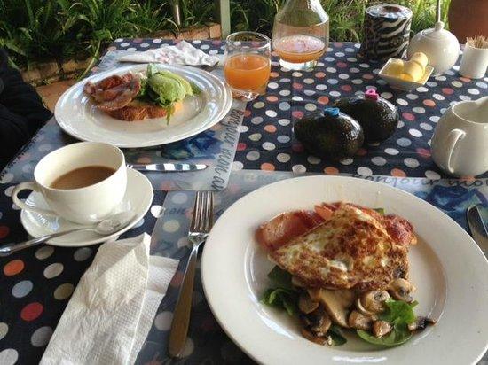 Avocado Grove B&B: A beautiful breakfast