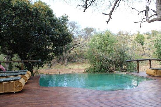 Tuningi Safari Lodge: POOL