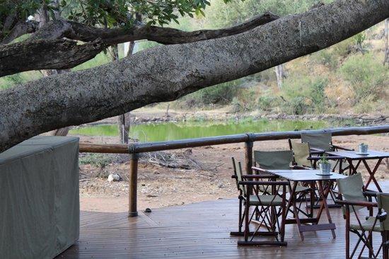 Tuningi Safari Lodge: BLICK AUFS WASSERLOCH