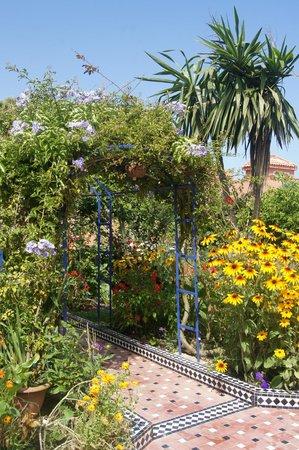 L'Hippocampe: Garten