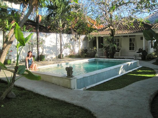 Gardenia Guesthouse: refreshing pool