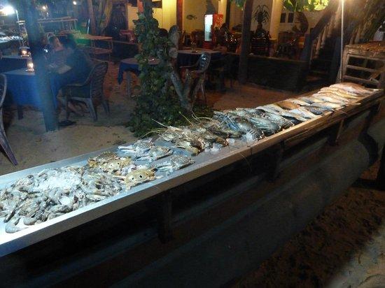Lucky Tuna: Fresh seafood